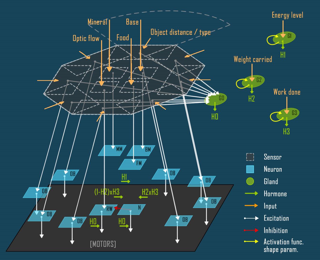 The network schema